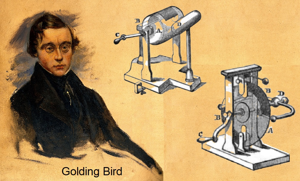 Golding Bird amperorio